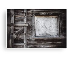 Ladder and Window Canvas Print
