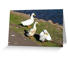 Would you like some cheese with those quackers? Greeting Card