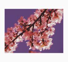 Pink Blossom Purple Sky One Piece - Long Sleeve