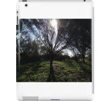 Sun shining through a tree iPad Case/Skin