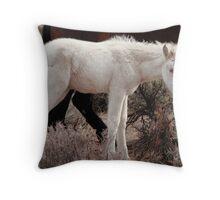 Rare Wild White Foal Close up Throw Pillow