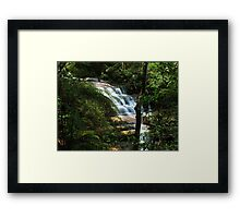 Rainforest Waterfall Framed Print