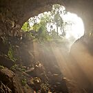 Misty cave entrance by John Spies