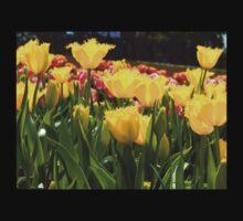 Yellow Tulip Field One Piece - Long Sleeve