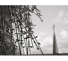 Hidden Faith Photographic Print
