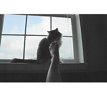 Bath Time with Kitty Photographic Print