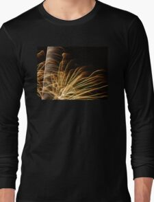 Feathery Fireworks Long Sleeve T-Shirt