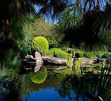 Japanese Gardens...Adelaide Australia by Ali Brown