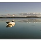Tinny Wallis Lake nsw by kevin chippindall
