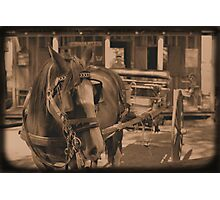 Saloon Taxi Photographic Print