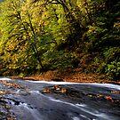 Upper Lake Creek ~ Slide Rock ~ by Charles & Patricia   Harkins ~ Picture Oregon