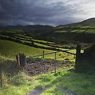 Dingle road by Paul Woods