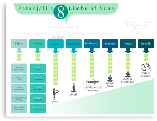 8 Limbs of Yoga by alisonhinksyoga