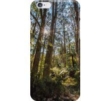 Dandenong Ranges, Victoria iPhone Case/Skin