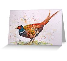 Gorgeous Pheasant Greeting Card