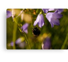 This one is mine! Canvas Print