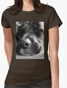 Let sleeping dogs lie Womens Fitted T-Shirt