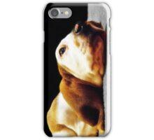 Basset Hound iphone case iPhone Case/Skin