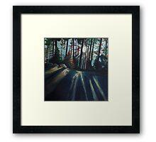 Light Rays Sequoia National Park Framed Print