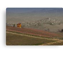 vineyard in Italy Canvas Print