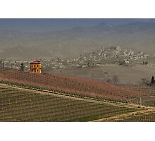 vineyard in Italy Photographic Print