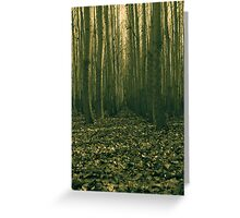 forest trial Greeting Card