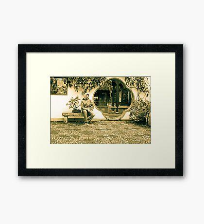 Chinese garden Framed Print