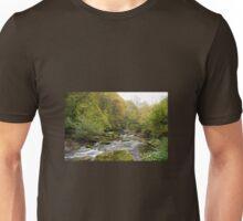 Doone Valley Bridge  Unisex T-Shirt