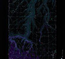 USGS Topo Map Washington State WA Anatone 239822 1971 24000 Inverted by wetdryvac