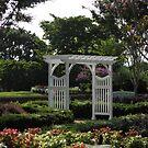 Courtyard Trellis, Virginia Crossings by AJ Belongia