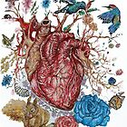 Heart by LuigiMrz