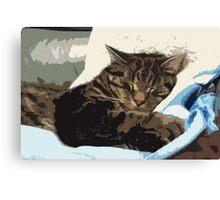 Cat Dreams Canvas Print