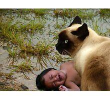 Cat On Da Hunt Photographic Print