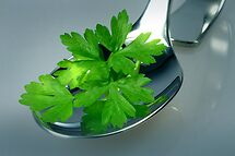 Parsley by SmoothBreeze7