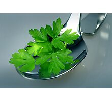 Parsley Photographic Print