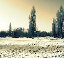 Snowy days:) by HopefulHarrie