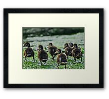 Family Life Framed Print