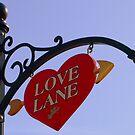 Love Lane by Barbara Gerstner