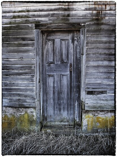 The Back Door by Aaron Campbell