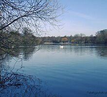 Langold Lake by staticpotato