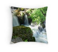 Beauty Behind the Foliage Throw Pillow