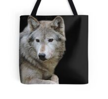 Behind Every Pair of Eyes Is A Life Full of Stories Tote Bag