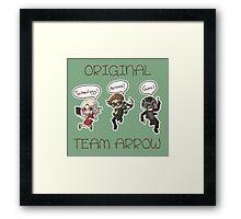 little OTA Framed Print