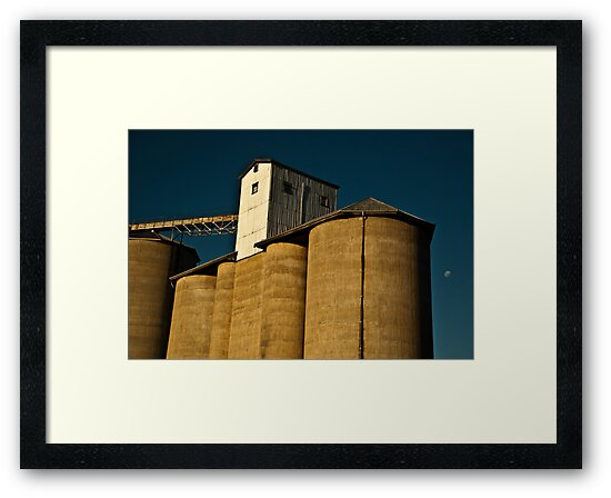 Late Afternoon Moon Rises Over the Silos by Phoebe Kerin