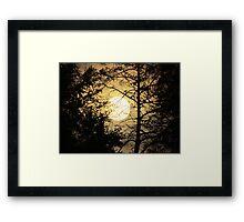 Moon Silhouette ~ Framed Print