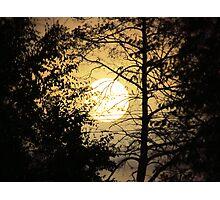Moon Silhouette ~ Photographic Print