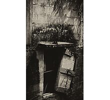 Decay Photographic Print