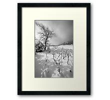 I've Got Sunshine Framed Print