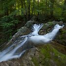 Mountain Stream by Jeff Palm Photography