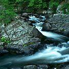 Adirondack Dream by Jeff Palm Photography